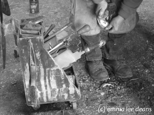 My father, the farrier